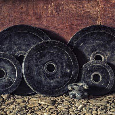 Handelscheiben die die Leistungsfähigkeit und Performance verdeutlichen sollen